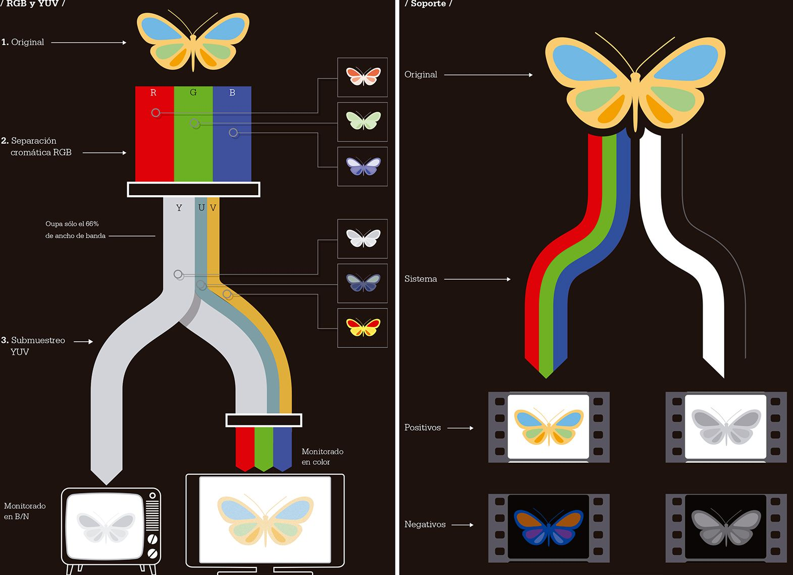 Infographics: Technical manual of cinema and digital television