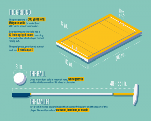Infographics: Visual Stories - know the Polo world